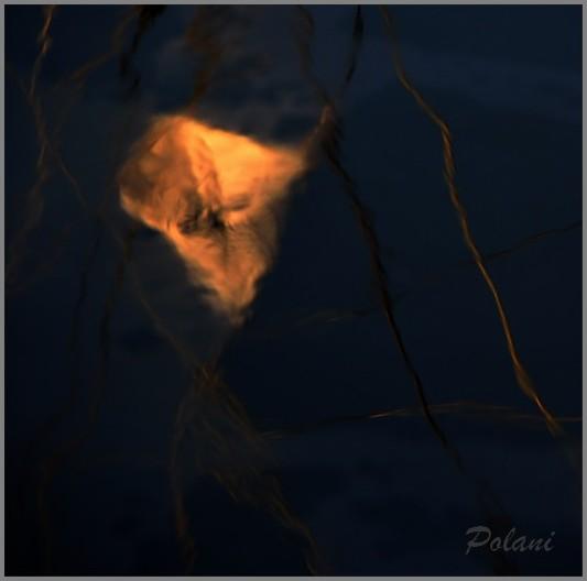 brillant-météore-saint-malo-2013_0372.JPG