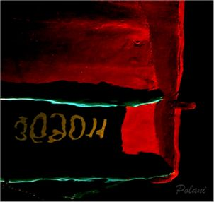 coque rouge Polani 2016_0679.JPG