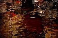 damassé-rouge-et-or-bayeux-2014mini_0091.JPG