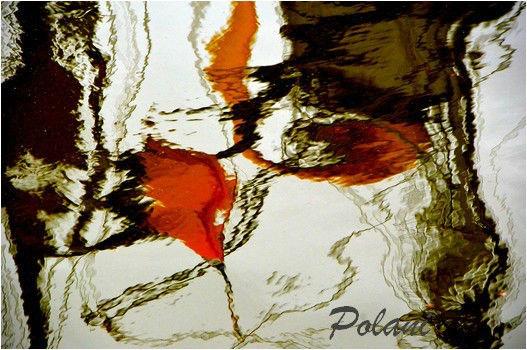 digressions-rotterdam-2013_0018.JPG