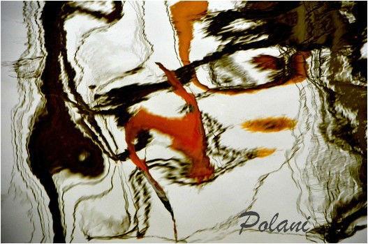 digressions-rotterdam-2013_0019.JPG