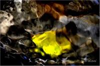 entre-ciel-et-terre-le-bourbonnier-été-2014mini_0042 .JPG