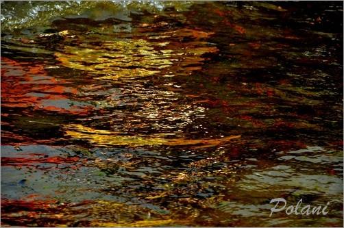 exuberance-doree-lancieux-2014_0219.JPG