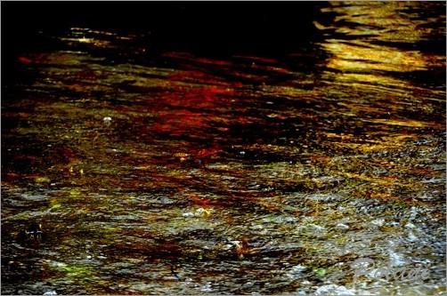 exuberance-doree-lancieux-2014_0229.JPG