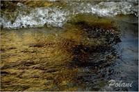 exuberance-doree-lancieux-2014mini_0240.JPG