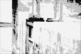 fusain-pf_0858.jpg