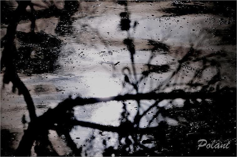 grésil sous la lune-GF_100DSC_109.jpg