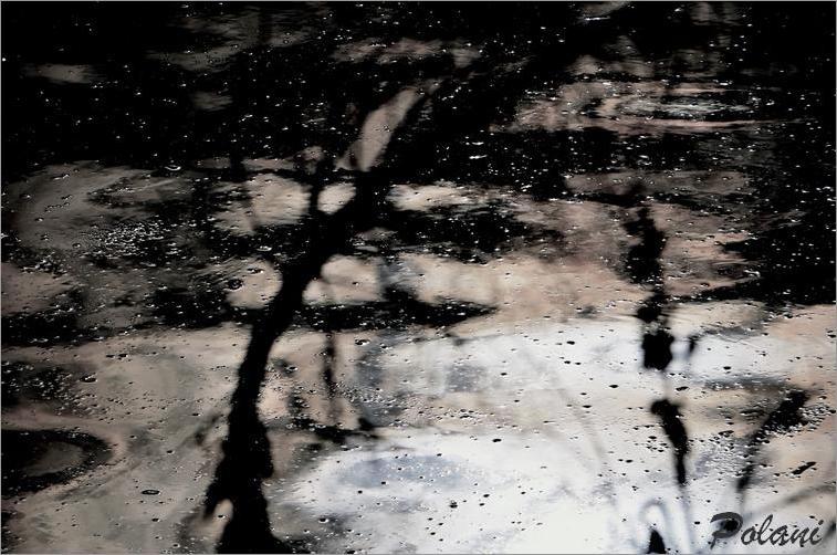 grésil sous la lune-GF_101DSC_0111.jpg