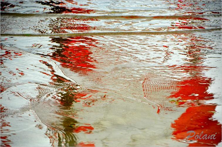 impressions-corail-2014_0085.JPG