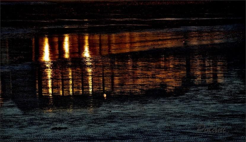 les-ors-de-la-nuit_0219.JPG