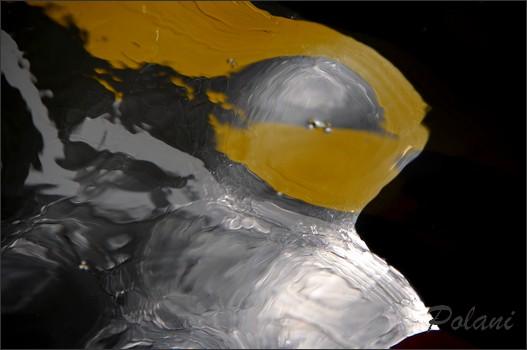 metalliques-brillances-3.JPG