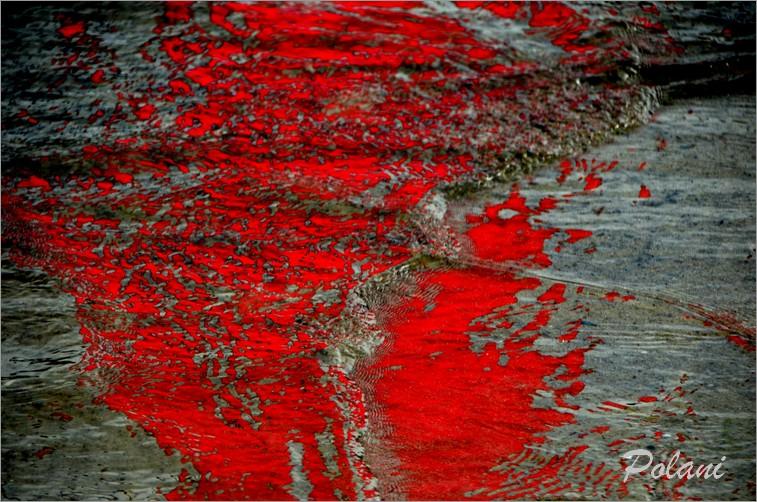 ondes-vermillon-lancieux-2014_0094.JPG