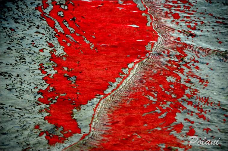 ondes-vermillon-lancieux-2014_0111.JPG