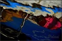 passion-photo-a-fleur-d-eau-0663P.JPG