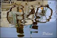 passion-photo-a-fleur-d-eau- P_496.JPG