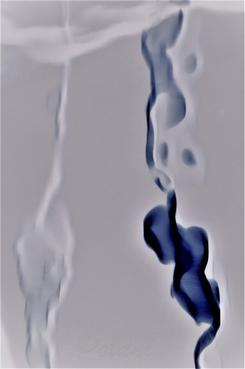 polani-négatif pf_010.jpg