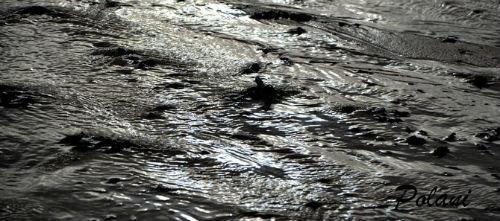 reflets-sur-le-sable-saint-lunaire-09-02-2014_0235.JPG