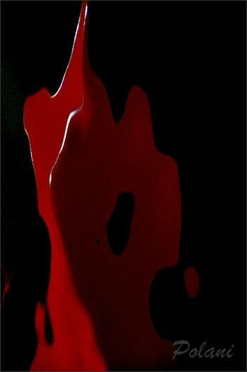 rouge-et noir-le-lyvet_0324.JPG