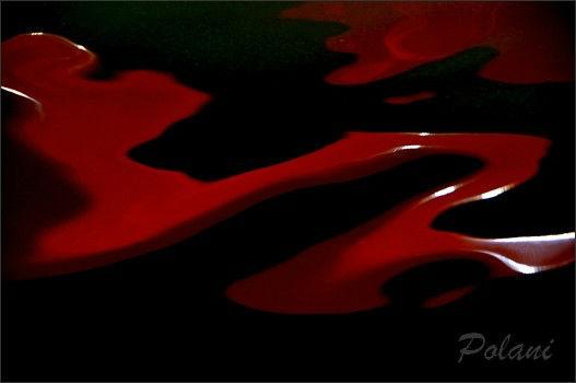 rouge-et noir-le-lyvet_0330.JPG