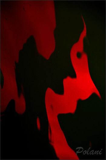 rouges-reflets-de-lyvet-08-09-2013_0339.JPG