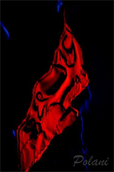 soie-ecarlate-cros-de-cagnes-2014_0380.JPG