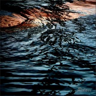 Submergé pf_112_0032.jpg