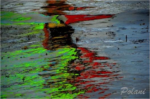 vagues-fluo-a-lancieux-2014_0194.JPG