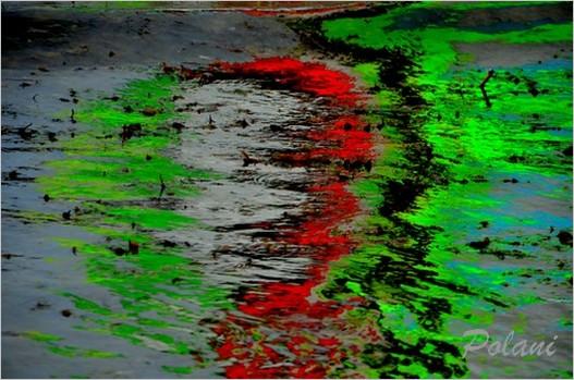 vagues-fluo-b-lancieux-2014_0187.JPG