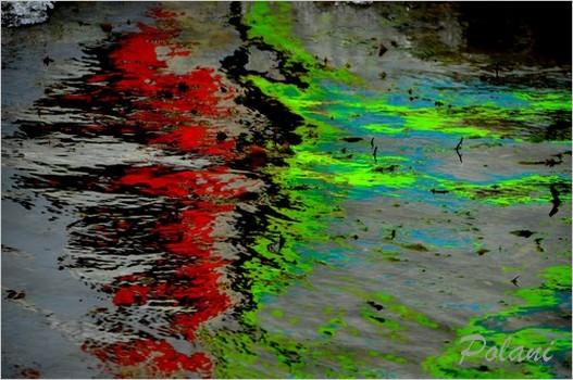 vagues-fluo-c-lancieux-2014_0180.JPG